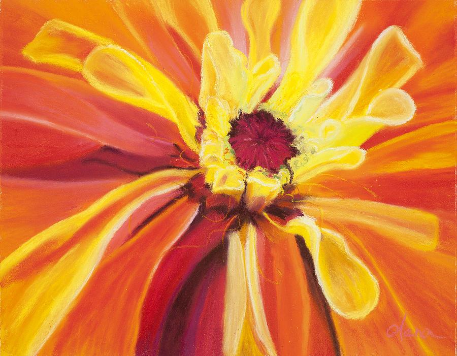 Flower Pastel - Zinnia by Dana Strotheide