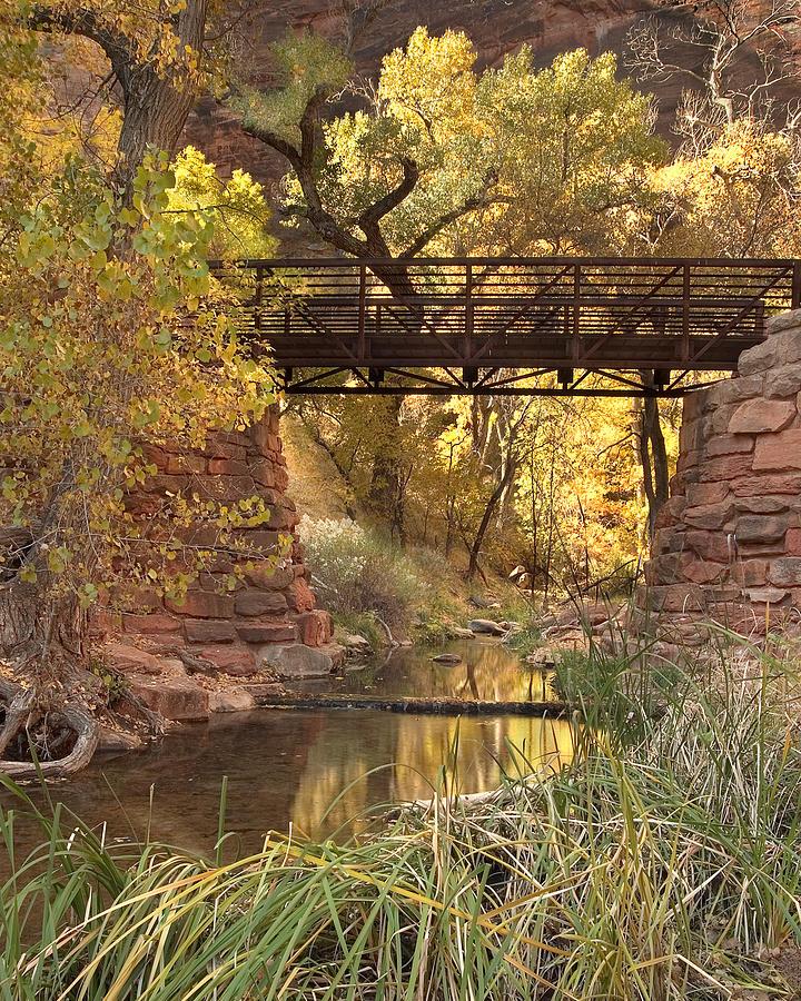 3scape Photograph - Zion Bridge by Adam Romanowicz