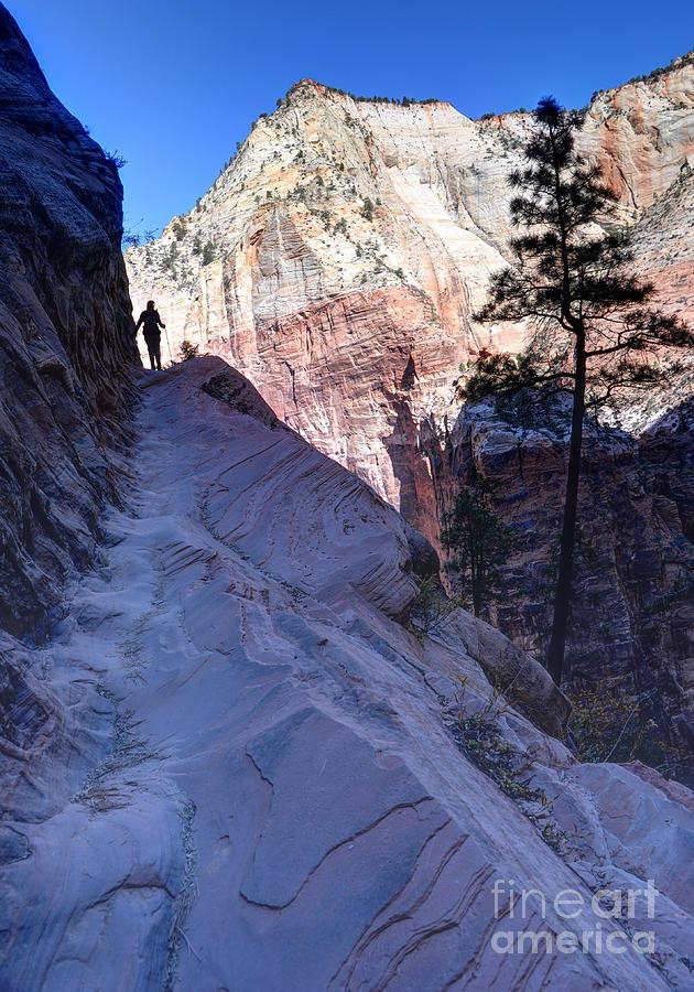 Zion National Park Photograph - Zion National Park Hiker Climbs Hidden Canyon Trail by Gary Whitton