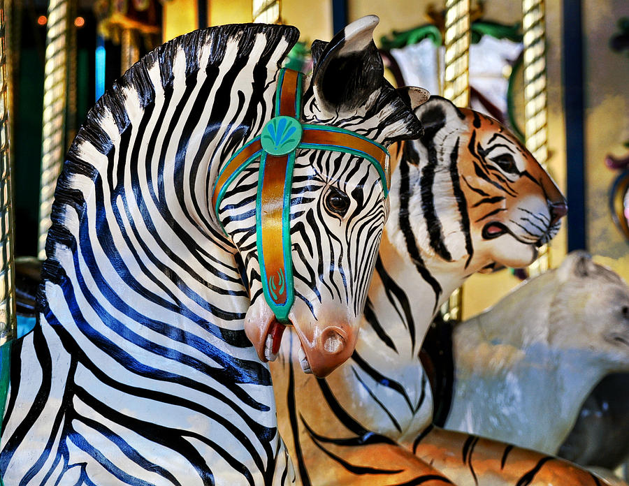 Carousel Photograph - Zoo Animals 2 by Marty Koch
