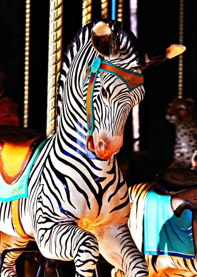 Zebra Photograph - Zoo Animals 3 by Marty Koch