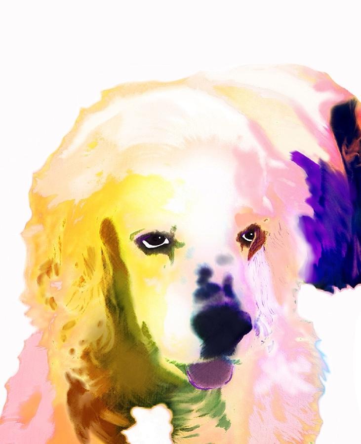 Dog Digital Art - Zorro by Cindy Edwards
