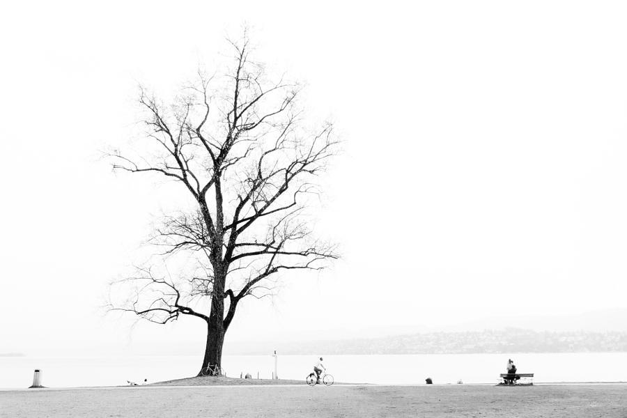 Zurich Photograph - Zurich by Pedro Nunez