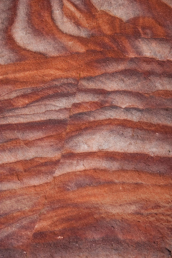 Petra Photograph -  A Close View The Layered Sandstone by Taylor S. Kennedy