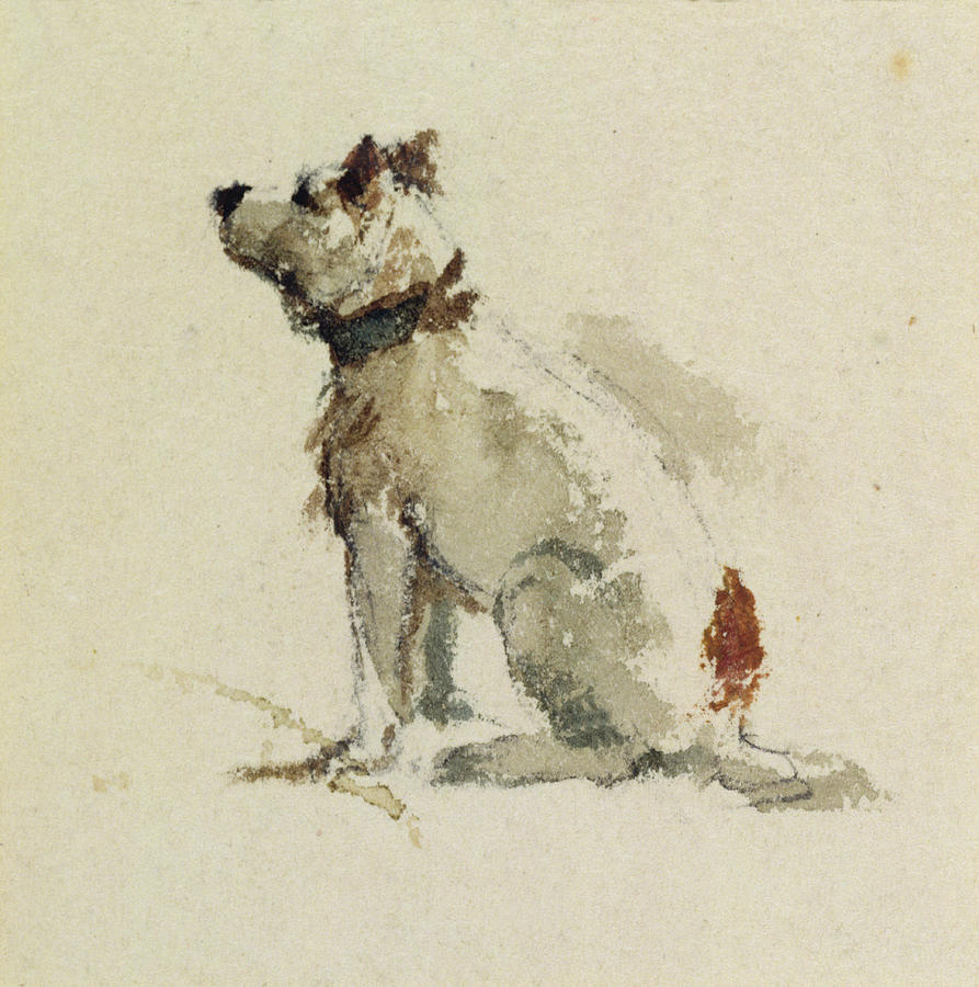Terrier Painting -  A Terrier - Sitting Facing Left by Peter de Wint