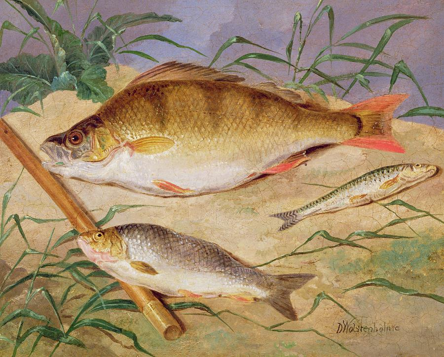 Angler Painting -  An Anglers Catch Of Coarse Fish by D Wolstenholme