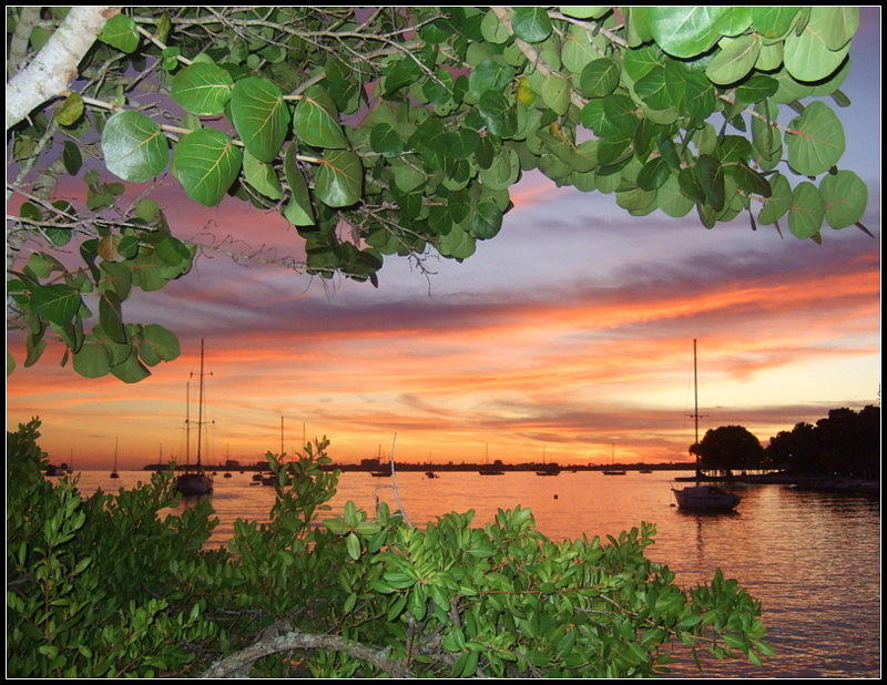 Sarasota Photograph -  Bay Sunset by Satya Winkelman