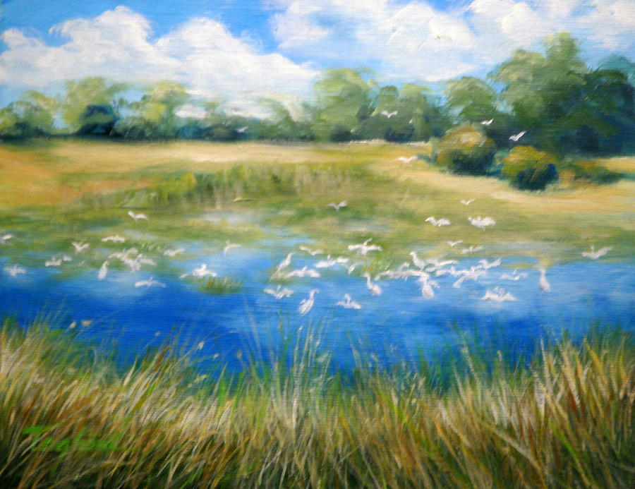 Everglades Painting -  Birds At Babcock by Mary Taglieri
