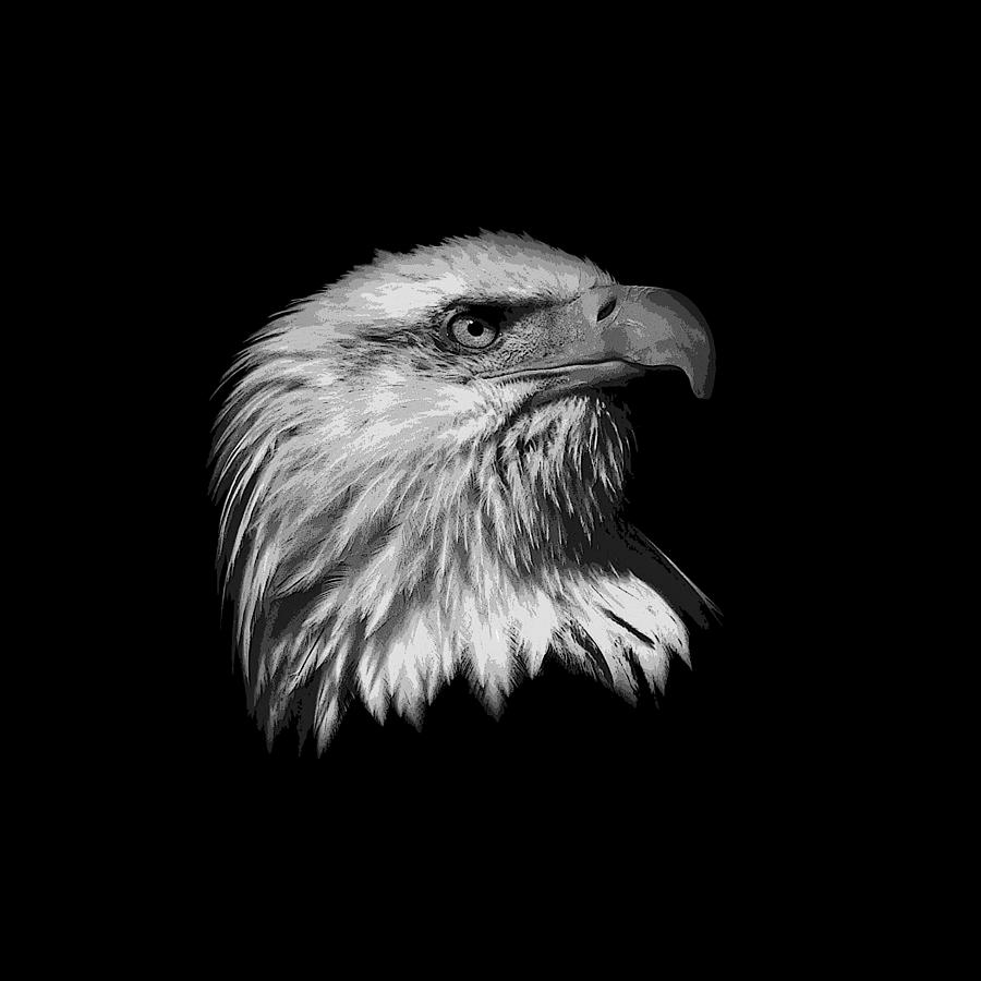 Black and white painted eagle