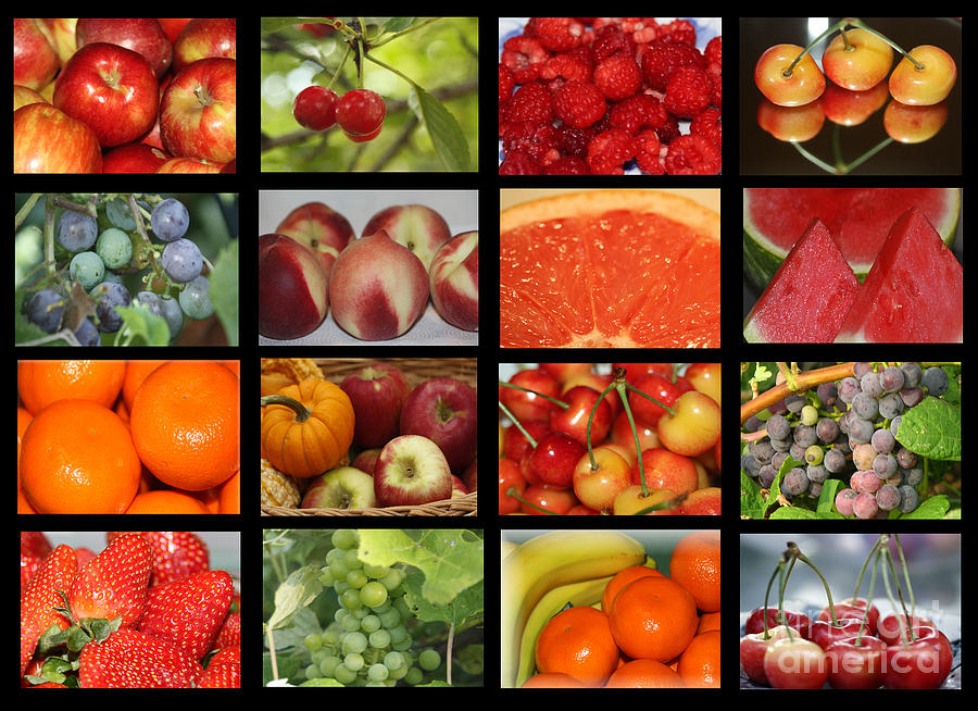 Fruits Photograph -  Fruits Collage by Yumi Johnson
