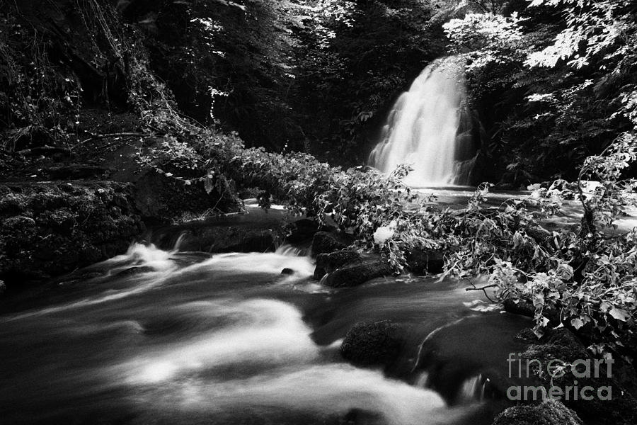 Glenoe Photograph -  Gleno Or Glenoe Waterfall Beauty Spot County Antrim Northern Ireland by Joe Fox
