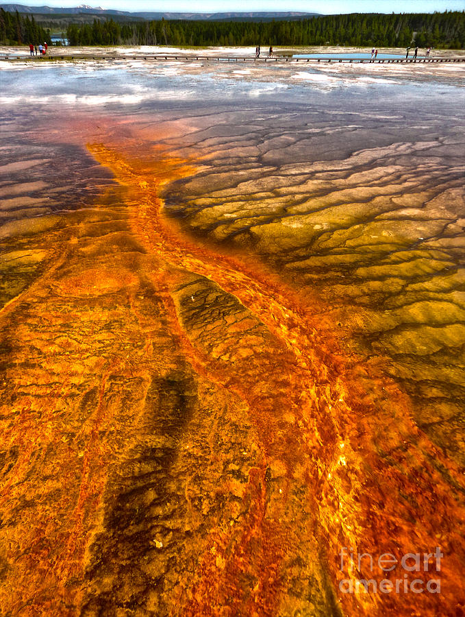 Yellowstone Photograph -  Grand Prismatic Spring In Yellowstone National Park - 02 by Gregory Dyer