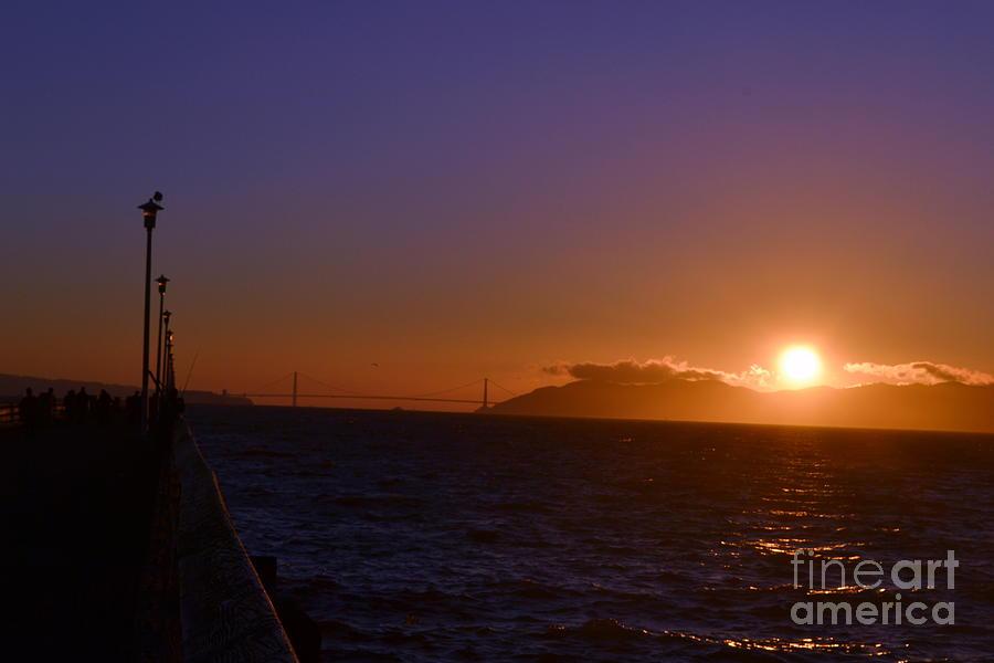 Bird Photograph -  Light Sunset by Saifon Anaya