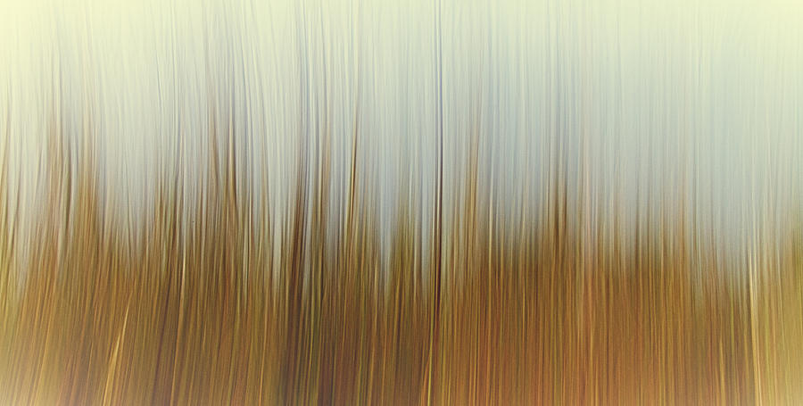 Abstract Photograph -  Movement by Stelios Kleanthous