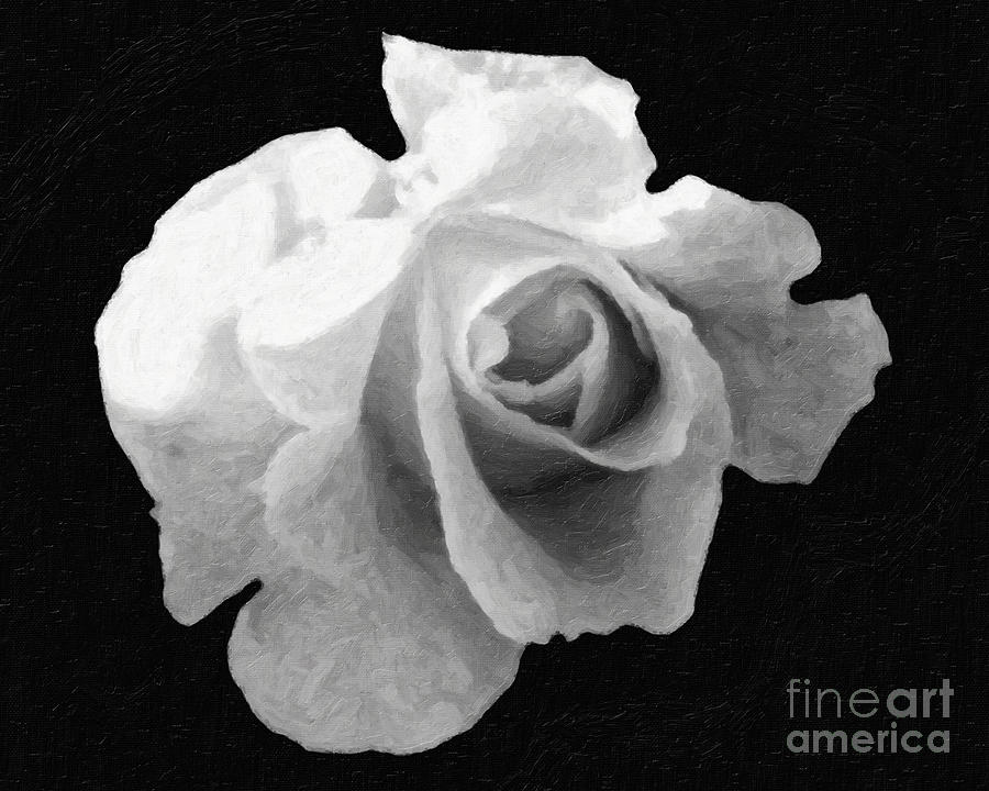 Flower Digital Art -  My Forgotten Rose by AHcreatrix