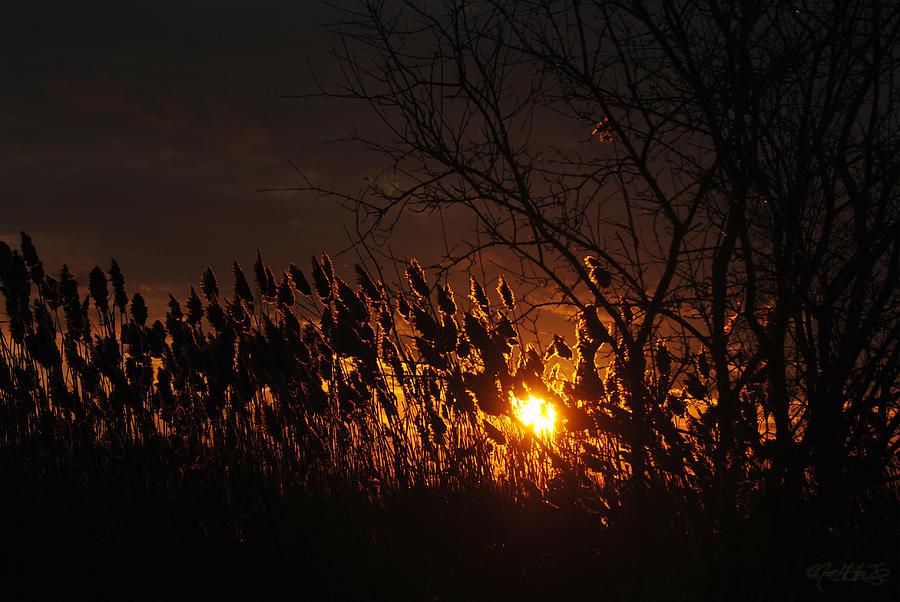 06 Sunset Photograph by Michael Frank Jr