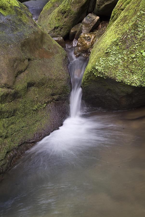 Arkansas Photograph - 0706-0170 Smith Creek Cascade by Randy Forrester