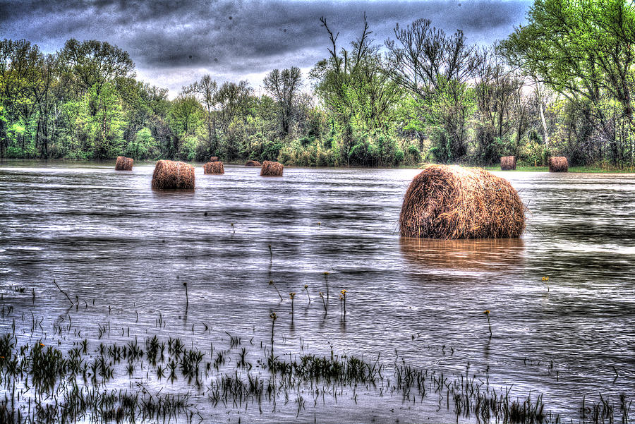 Farm Photograph - 0804-3586 Flooded Hay by Randy Forrester
