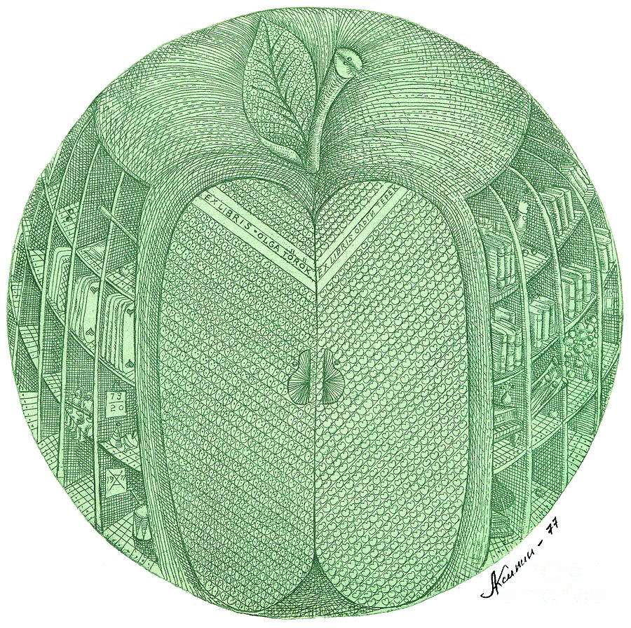 Apple Drawing -   Collection Museumstock.com by Aksinin
