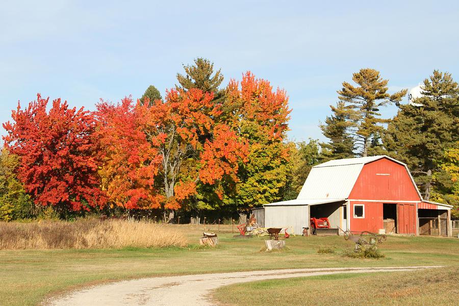 Autumn Photograph - 10022012 066 by Mark J Seefeldt