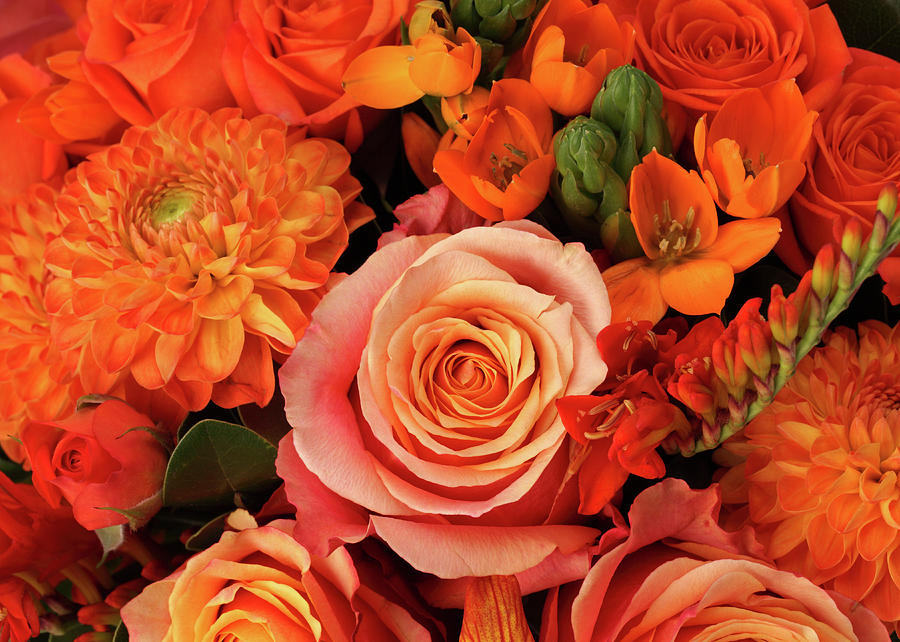 Horizontal Photograph - A Close-up Of A Bouquet Of Flowers by Nicholas Eveleigh
