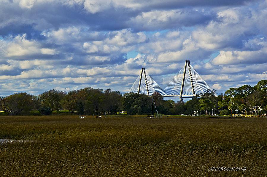 Charleston Photograph - A Ravenel Bridge Charleston Sc by Megan Pearson