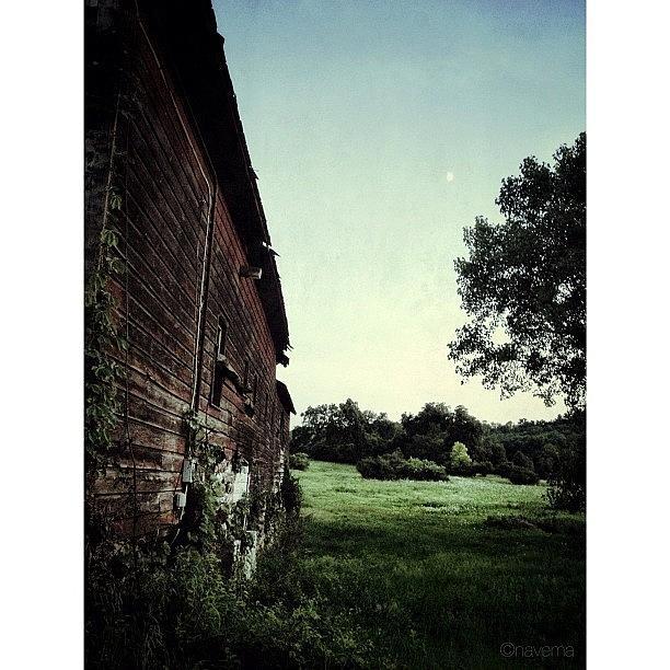 Barn Photograph - Abandoned Barn by Natasha Marco