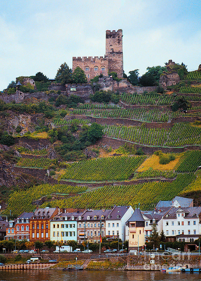 Rhine River Photograph - Along The Rhine River by Mike Nellums