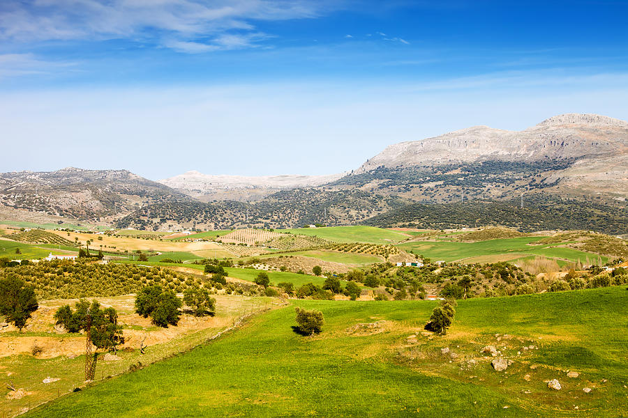 Andalucia Photograph - Andalusia Landscape In Spain by Artur Bogacki