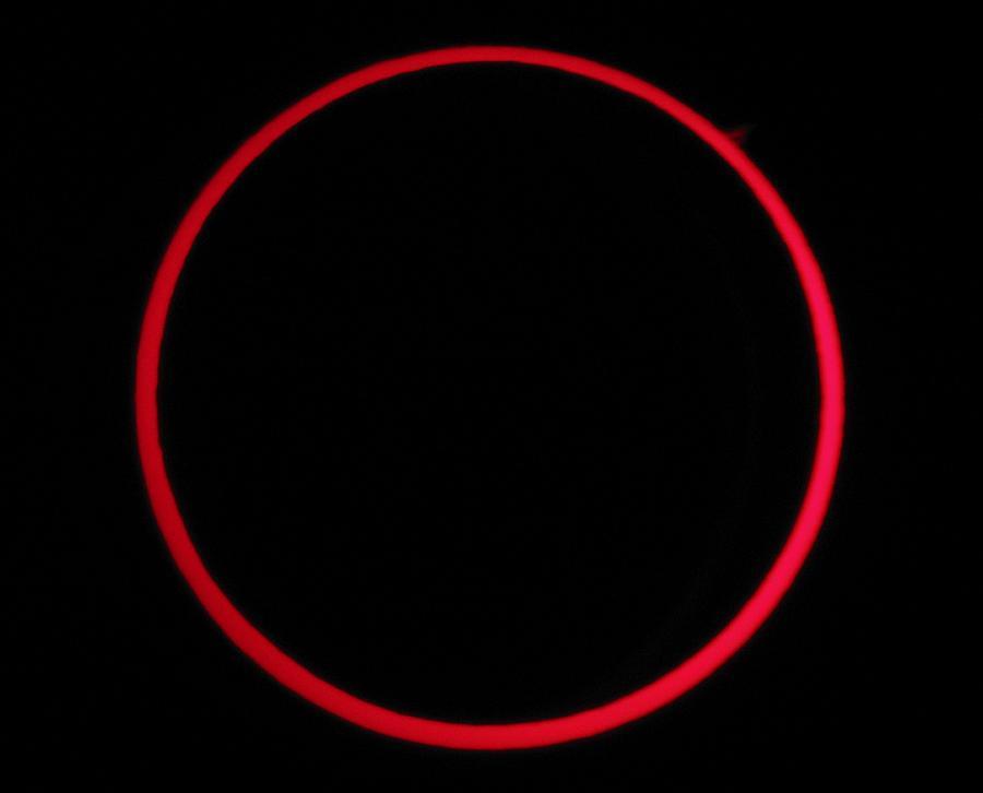 Sun Photograph - Annular Solar Eclipse by Laurent Laveder