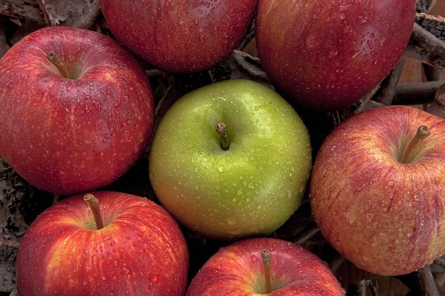 Apple Photograph - Apples by Joana Kruse