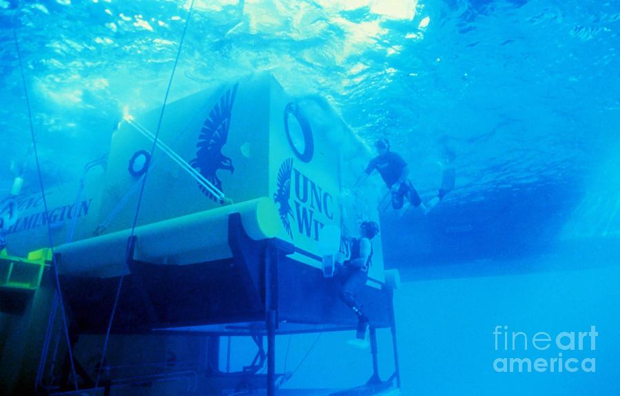 Aquarius Photograph - Aquarius Underwater Ocean Laboratory by Science Source