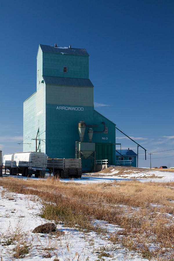 Arrowwood Photograph - Arrowwood Alberta by Jill Lassaline
