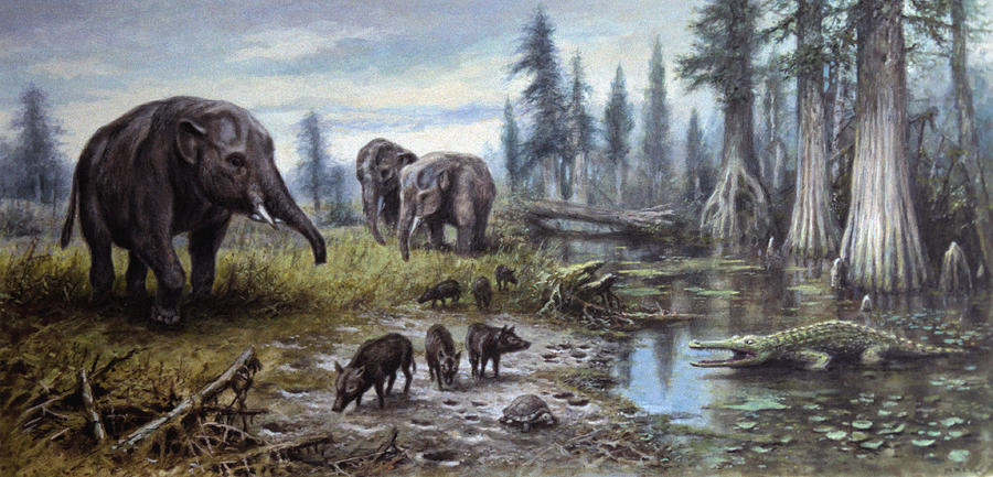 artist s impression of tertiary period landscape photograph by