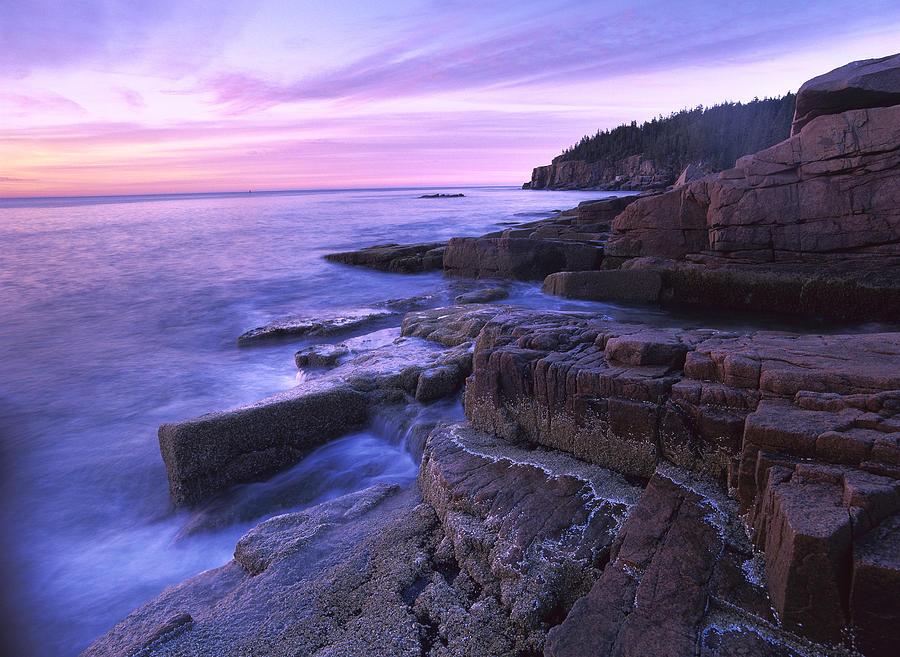 Atlantic Coast Near Thunder Hole Acadia Photograph by Tim Fitzharris