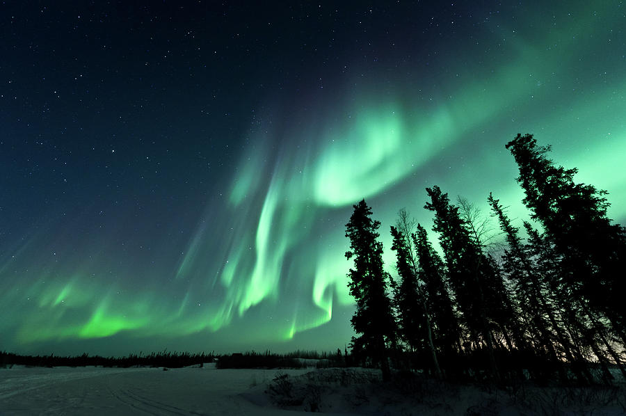 Image result for aurora borealis photographs