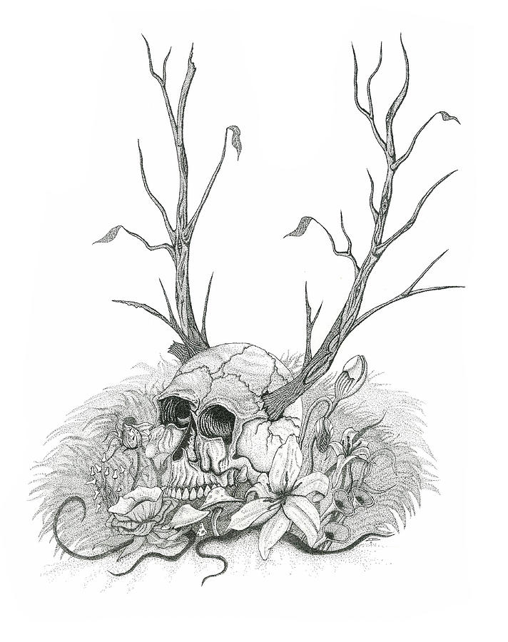 Bad Seed Drawing by Jeff Gould