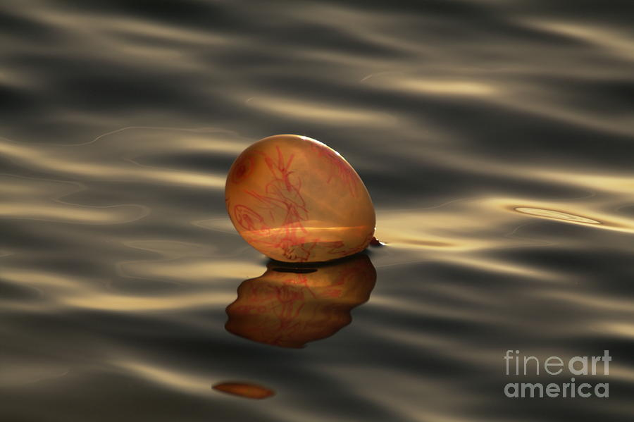 Nature Photograph - Balloons On The Water by Odon Czintos