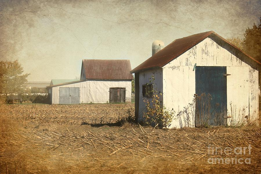 Barn Photograph - Barns by Sophie Vigneault