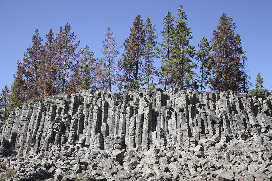 Basalt Columns Formed By Cooling Lava Photograph By