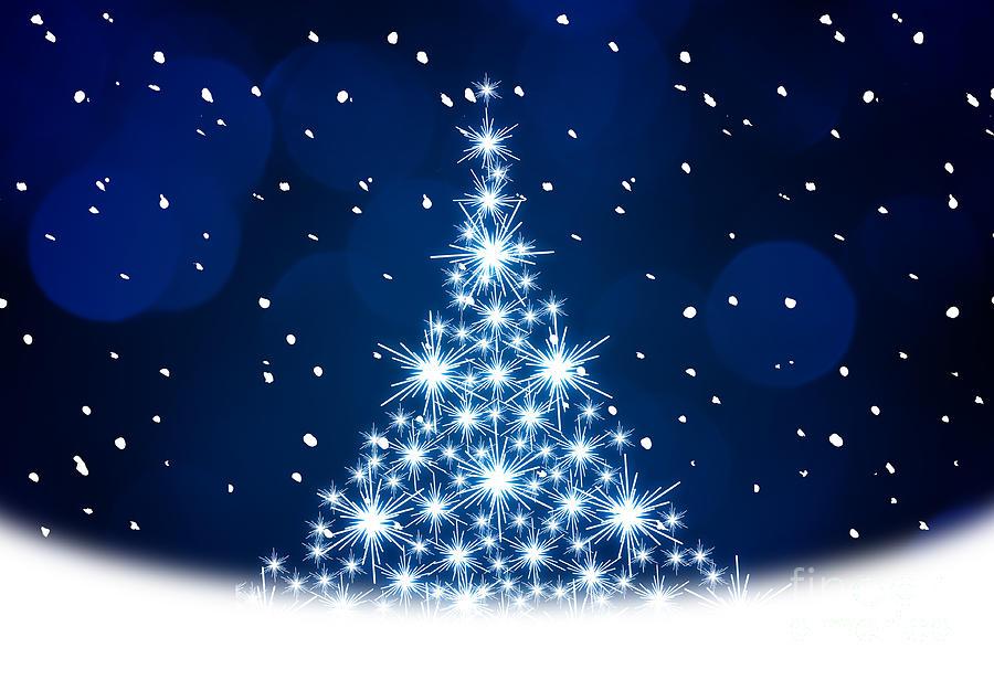 kamo photograph blue christmas tree illustration by kati finell