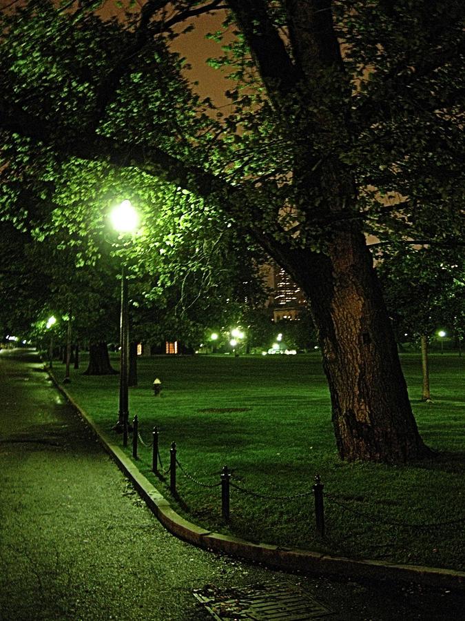 Boston Common by Robert Boyette