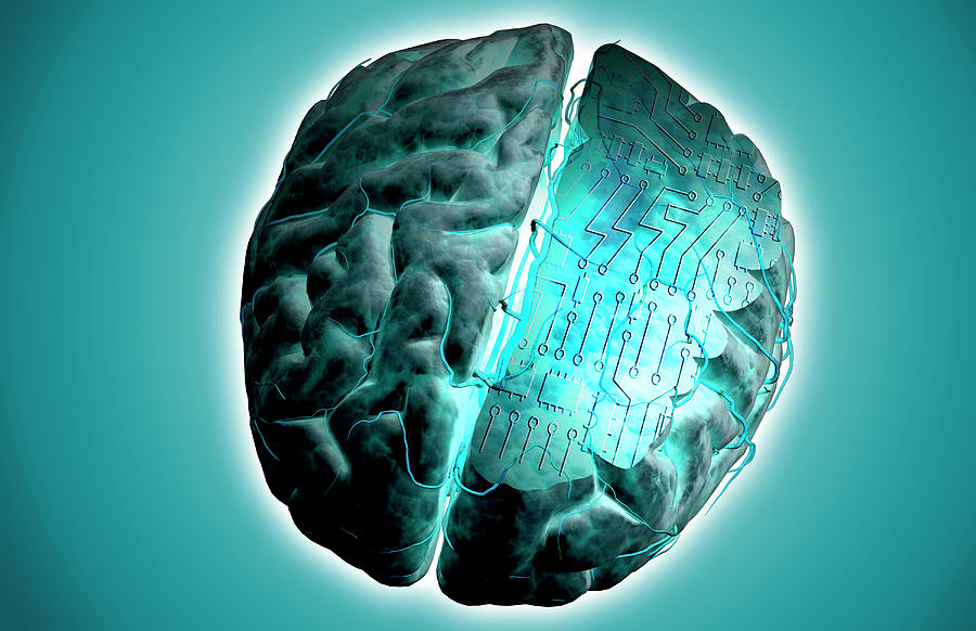 Horizontal Digital Art - Brain With Circuit Board by MedicalRF.com