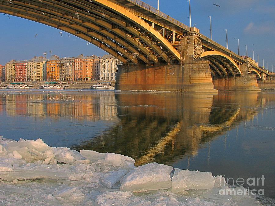Nature Photograph - Bridge by Odon Czintos