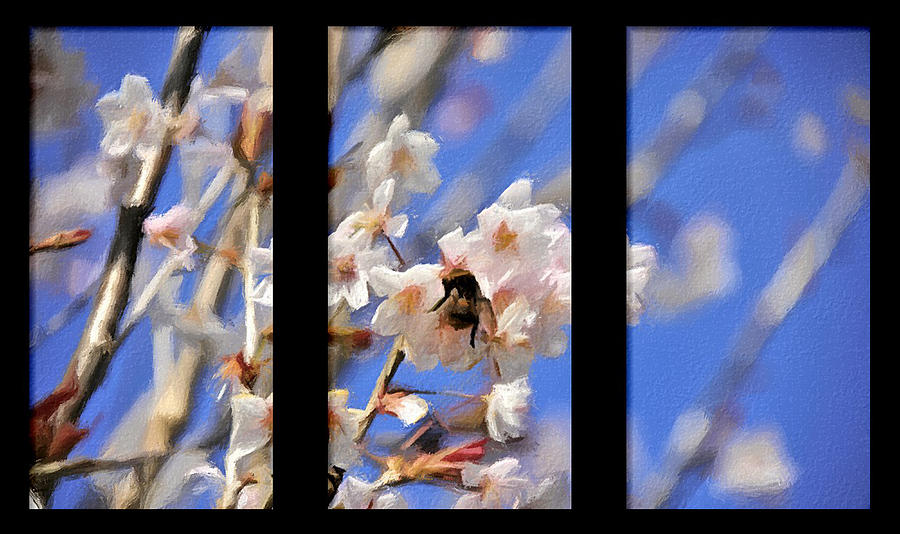 Triptych Photograph - Bumble Bee by Svetlana Sewell