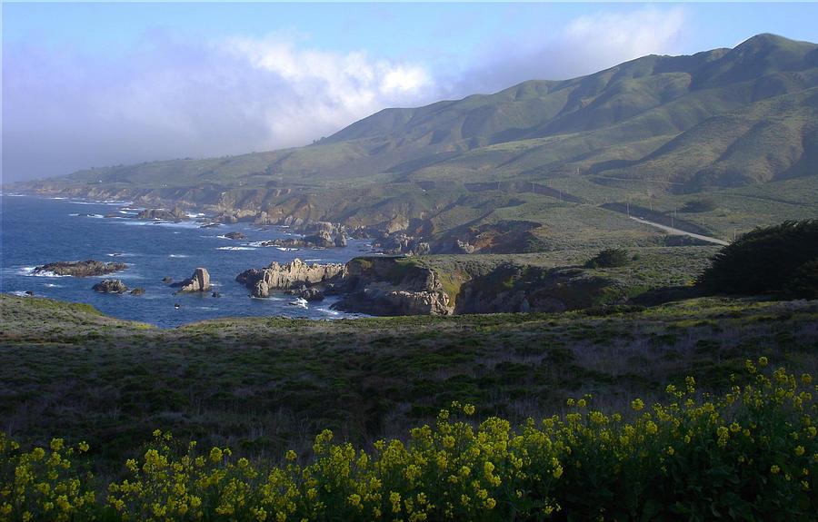 California Photograph - California Coast by Cyndi Combs