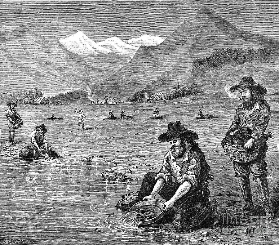California Gold Rush Photograph By Granger