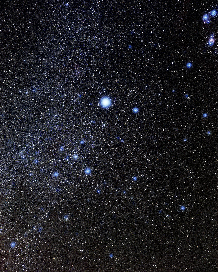 Sirius Photograph - Canis Major Constellation by Eckhard Slawik