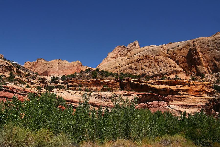 Nature Photograph - Captial Reef by Southern Utah  Photography