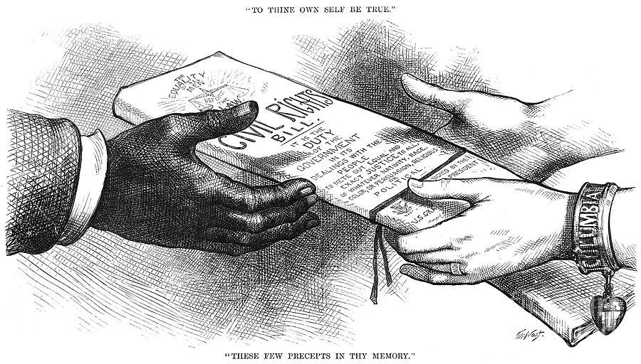 Cartoon Civil Rights 1875 Photograph By Granger